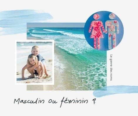 المذكر المؤنث 2 - التربية من خلال اللعب بالفرنسية كلغة أجنبية